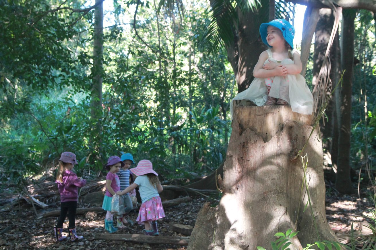Red Hill educators create a magical fairy forest