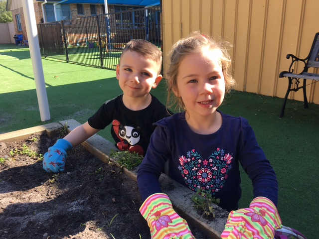 Little hands help build garden at Goodstart Bentleigh East